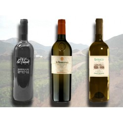 Vini Italiani - La classe non è acqua