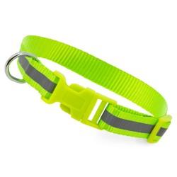 Collare fluorescente per cane