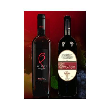 Vini Rossi di Sardegna
